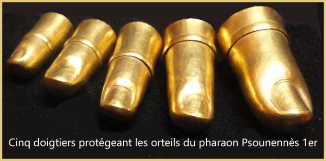 10-Cinq doigtiers protégeant les orteils du pharaon Psounennès 1er