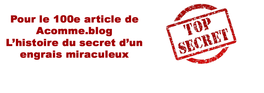 LE SECRET VAN RINJ IMAGE DE UNE TOP SECRET