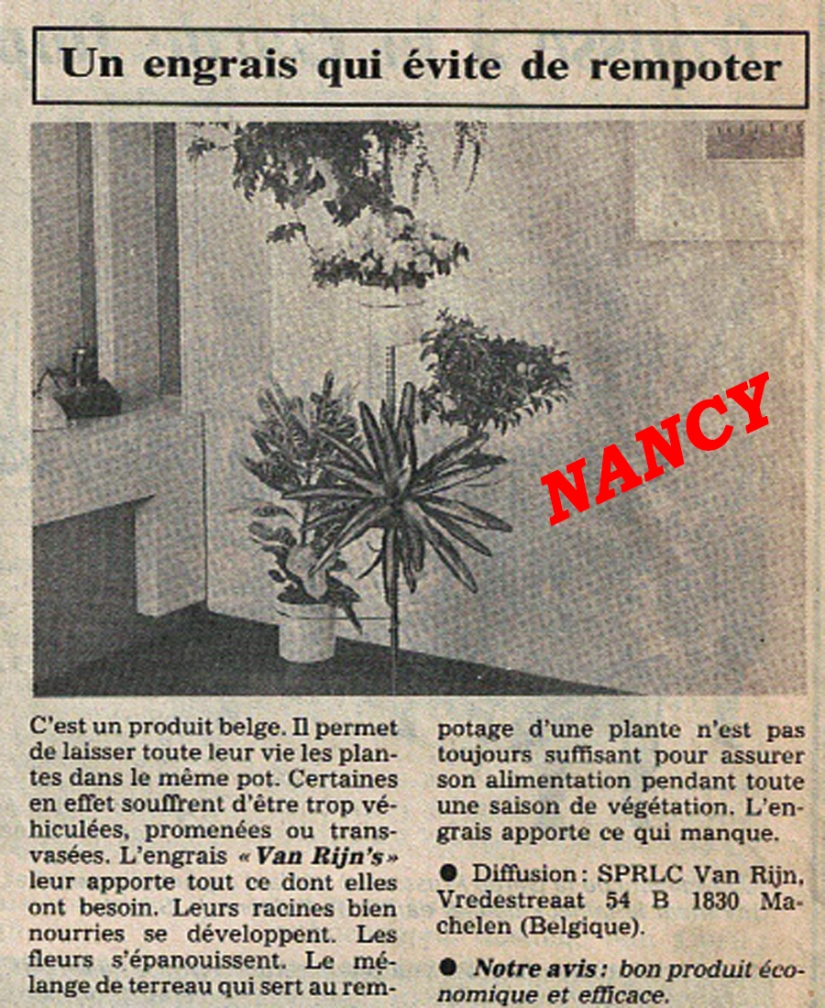 LE SECRET VAN RINJ PRESSE NANCY