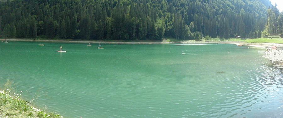 THONON  Lac de Montriond vue sur le lac